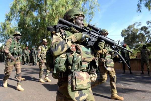 Déployée en Gambie dans le cadre de la MICEGA, l'armée sénégalaise fait le nettoyage