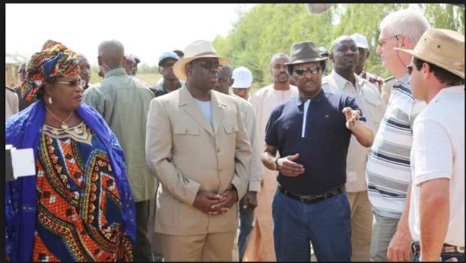 Les hommes qui contrôlent le système: Baba Diaw, l'incontournable pétrolier