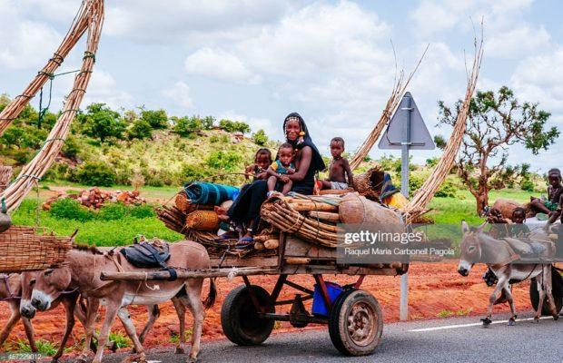 Mali : « Le problème de fond, c'est que les Peuls se sentent abandonnés »