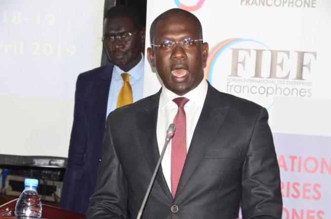 90 IMAGES: Cérémonie d'ouverture du Forum International des Entreprises Francophones par le MEDS du président Mbagnick Diop.