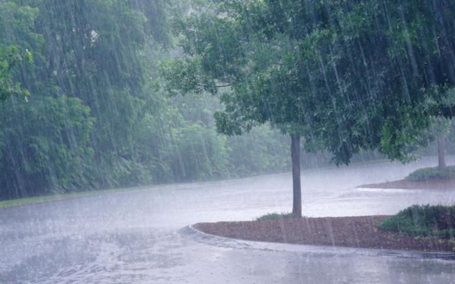 Kolda : les premières pluies sont tombées, hier