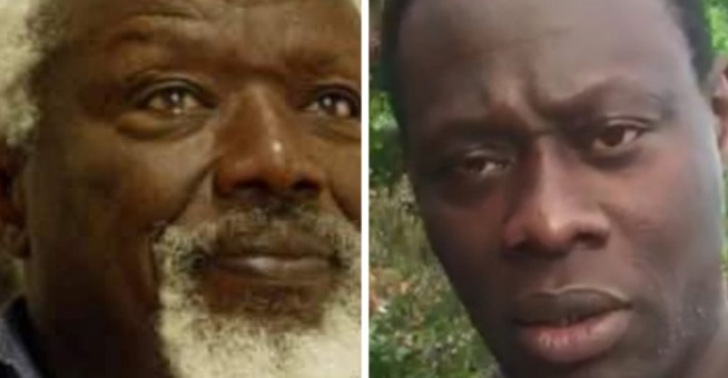 Révélations sur l' immortel Ousmane Sow sculpteur ; Papa Gora Seck parle de …