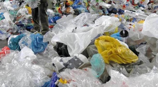 Marché Castors - Interdiction de sachets plastiques: Clientes et commercants attendent son application