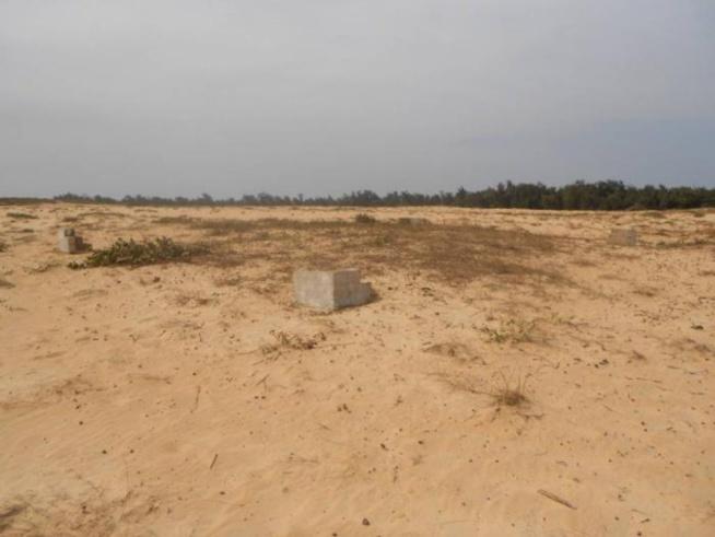 Litige foncier à Mbane : les populations s'opposent à l'octroi de 8000 hectares à un promoteur