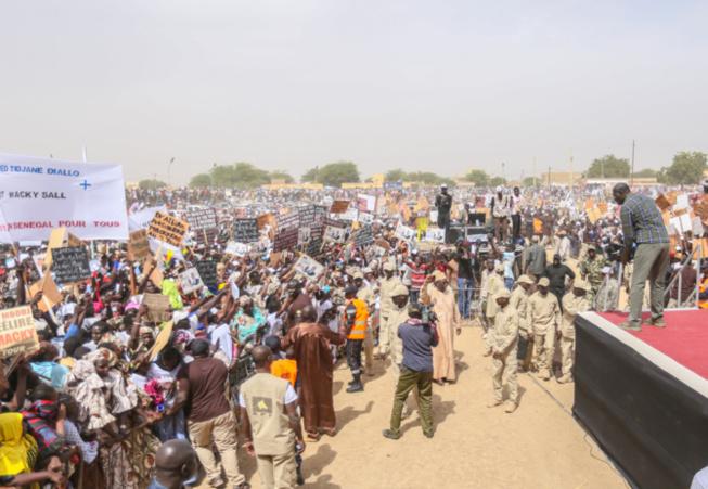 AFRICA OIL - GESTION DE L'ÉNERGIE : Les cadres et mouvements de développement du Walo félicitent le Président et expriment leur soutien total au Ministre Mouhamadou Makhtar Cissé.