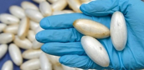 Arrêté en Italie : Un Sénégalais de 18 ans tente d'avaler 80 g de cocaïne