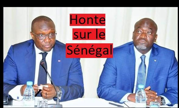 Le Sénégal Électrocuté : La Presse Africaine Lynche MMC Et Le DG De La Senelec