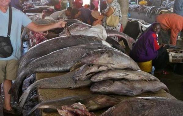 Contre la nouvelle taxe sur la charge à l'essieu: l'Union des mareyeurs du Sénégal en grève de 72 heures à partir de demain