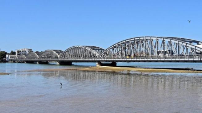 Covid-19 à Saint-Louis : Les résultats du mareyeur suspecté sont finalement connus (cas communautaire)