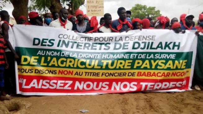 Foncier : Les populations de Djilakh tournent en dérision la conférence de presse de Babacar Ngom et appellent à une marche nationale le 17 juillet