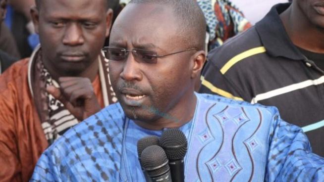 Momar Ndao: « Il faut un arrêté ministériel pour fixer les prix des moutons »