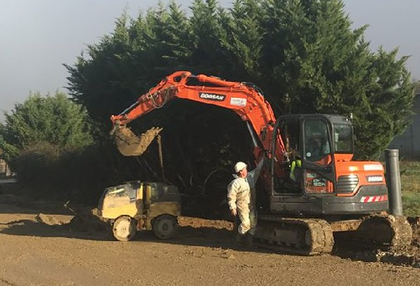 Le Plan Sénégal Emergent Vert en promotion: Pourtant des bulldozers rasent des arbres