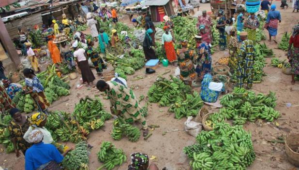 Banque mondiale : « Le système alimentaire est très loin de pouvoir nous aider à réaliser les Objectifs de développement durable