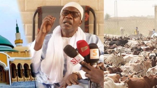 Magal et crise Malienne – Serigne saliou thioune fait une révélation de taille « Pourquoi on est pas parti au Mali pour des bœufs »