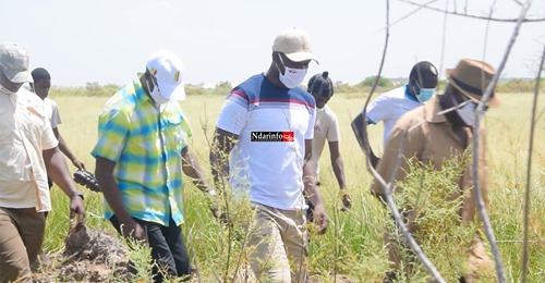 VAP/ Plus de 6 millions FCFA investis par les Patriotes de Saint-Louis : Ousmane SONKO exprime sa vive satisfaction
