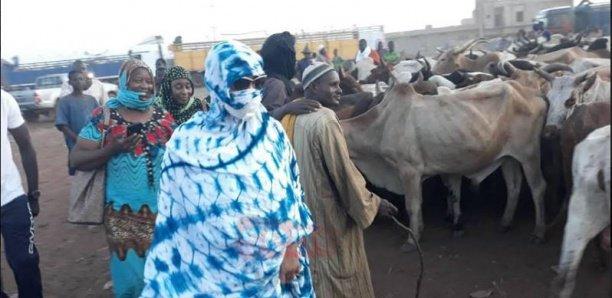 Magal à Ngabou : Sokhna Aïda Diallo a mobilisé un budget de 2,5 milliards Fcfa