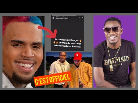 WALLY B. SECK FEAT CHRIS BROWN [ACAPÉLA] CLIP TEARSER