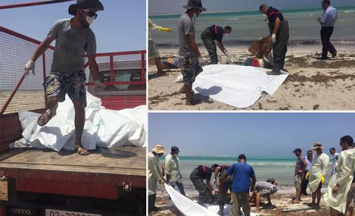 « Barsa wala barsakh »: 10 corps repêchés au Cap-Vert