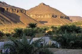 La Mauritanie consomme trois fois plus qu'elle ne produise en matière de ressources forestières