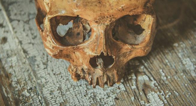 Le mystère de ce crâne isolé retrouvé dans une grotte d'Italie résolu