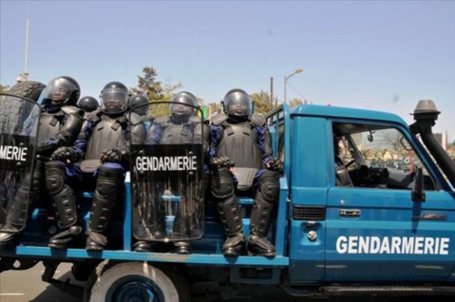 Descente à Keur Mbaye Fall: la gendarmerie neutralise une bande d'escrocs