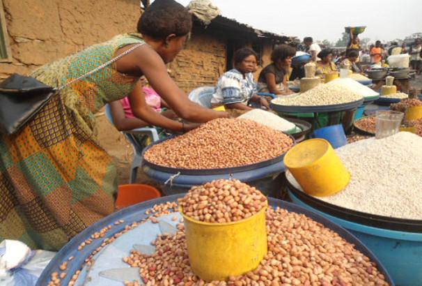 Promotion des céréales locales et autonomisation des femmes : L'AFAO pour la commande publique auprès des femmes productrices