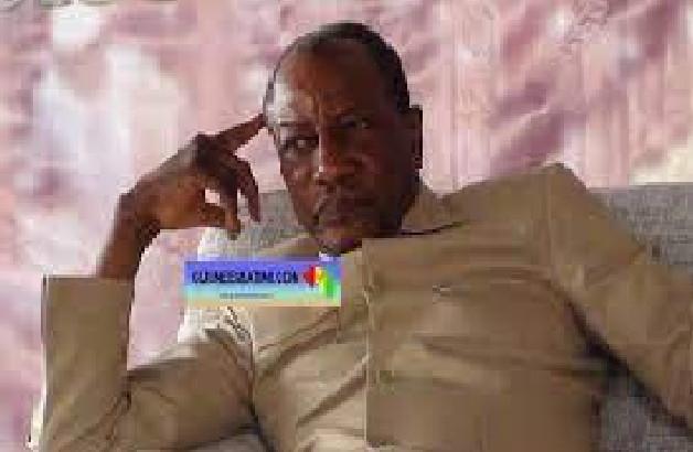 Guinée / Alpha Condé était-il devenu gâteux ?: Certains proches le disent