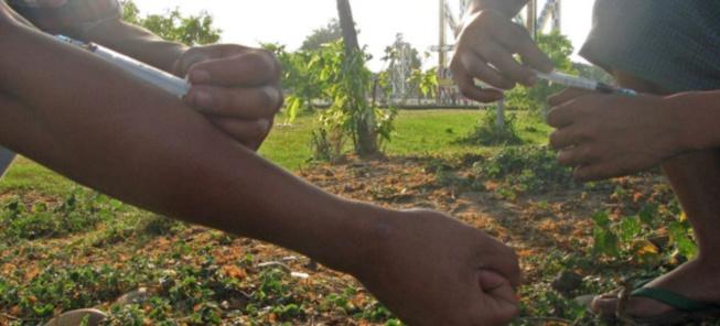 Le mal s'élargit en Afrique de l'Ouest: l'usage de plus en plus accru des drogues par les femmes