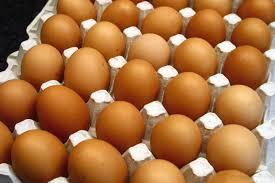 Deux morts pour une affaire d'œufs pourris à Wakinane Nimzatt