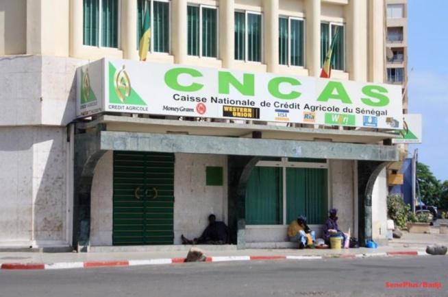 Détournement à la Cncas: L'ancien caissier risque 7 ans de prison ferme
