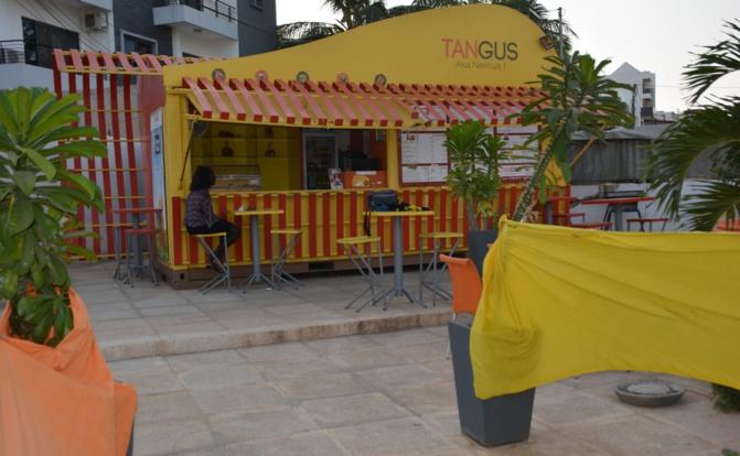 Conséquences de l'échec du projet «Tangus»: Un immeuble de la fille de Moustapha Niasse vendu aux enchères mardi prochain