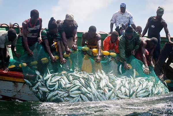 Expulsion des travailleurs sénégalais: les pêcheurs mauritaniens en grève