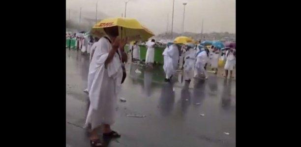 Vidéo – Pèlerinage à la Mecque : Une forte pluie sur Arafat