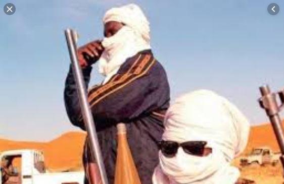 VIDEO - Mauritanie: infiltration de présumés djihadistes étrangers dans le pays