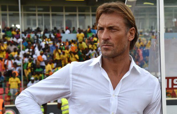 Hervé Renard: « J'aimerai entraîner le Sénégal (…) je l'espère sincèrement »