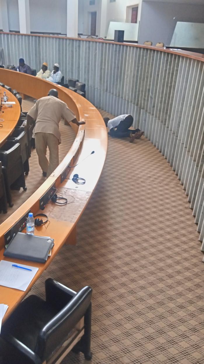Insolite à l'Assemblée nationale: deux chats réussissent à suspendre la séance plénière