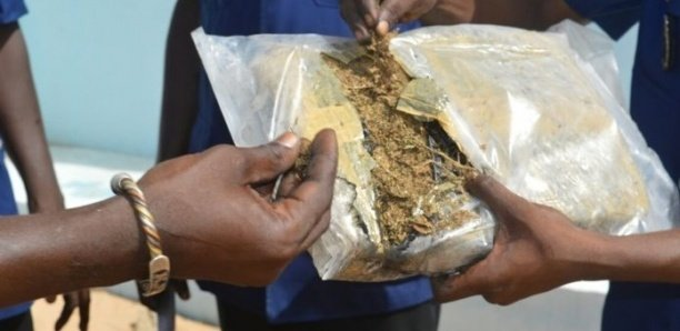 Mbour -Tentative de corruption :Un tailleur arrêté avec 500 g de chanvre, il file 50.000 francs au gendarme