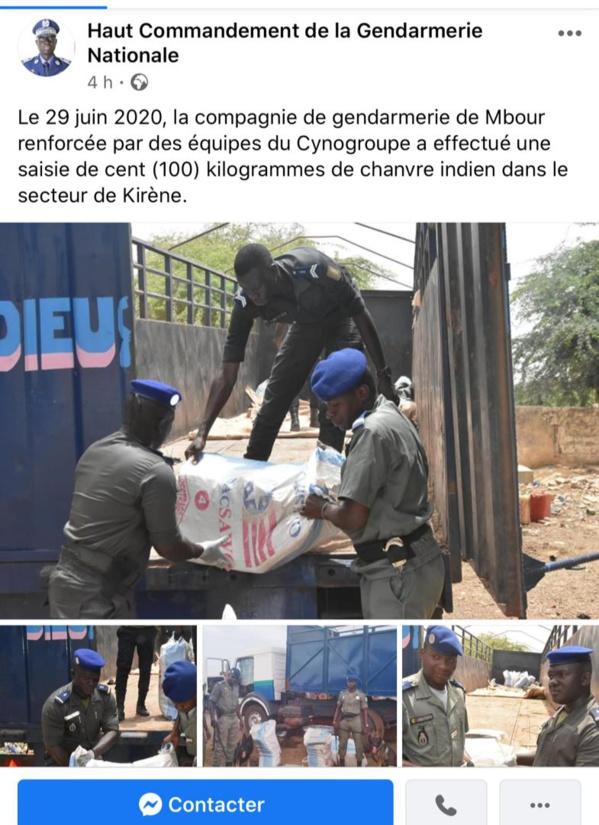 Mbour: La gendarmerie a saisi 100 kg de chanvre indien