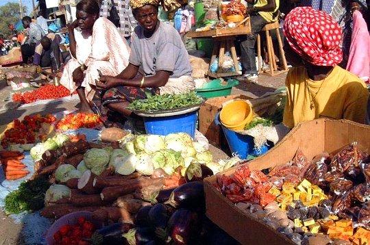 Sénégal : Baisse des chiffres d'affaires des services et du commerce en avril 2020