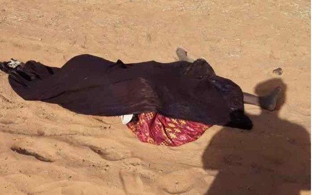 Louga : Mort subite d'un saisonnier dans les champs de son employeur
