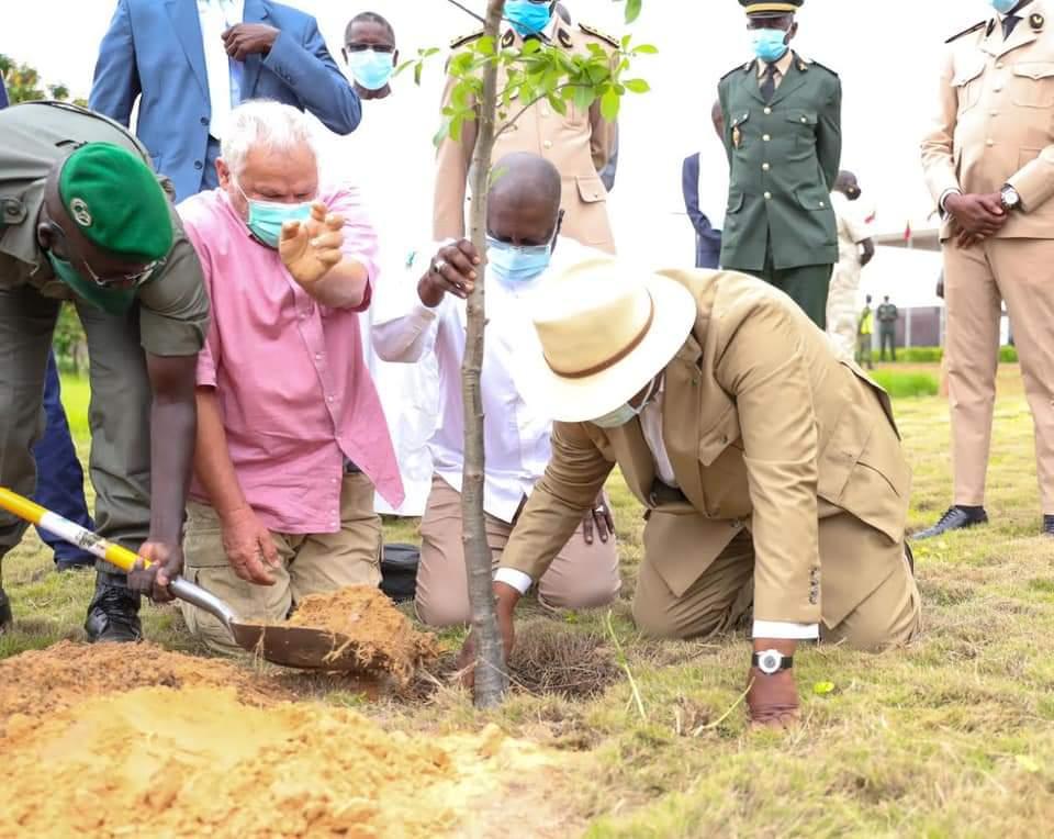 Journée De L'arbre 2020 : Macky Corrige Le Ministre De L'Environnement