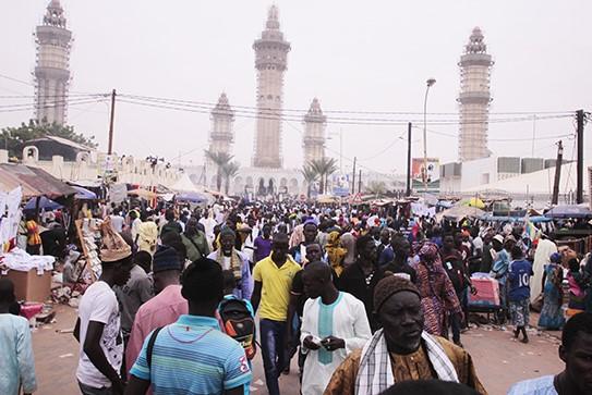 Magal et Coronavirus : La position ferme de Amadou Lamine Sakho
