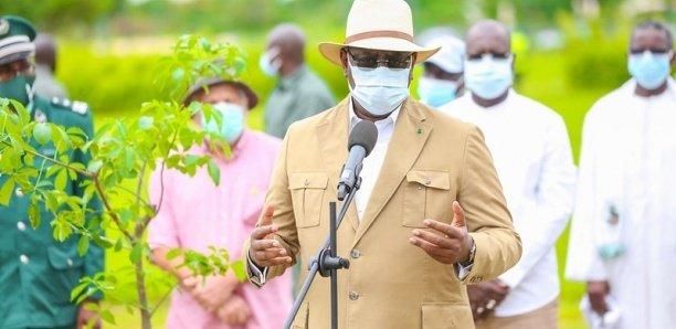 Macky invite au reboisement, des bulldozers rasent des arbres