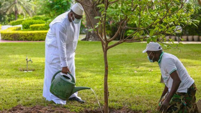 Arret sur image : Macky Sall entrain d'arroser les arbres du palais…Regardez