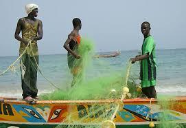 Licences de pêche: Les pêcheurs de Thiaroye -sur-mer tirent sur Alioune Ndoye