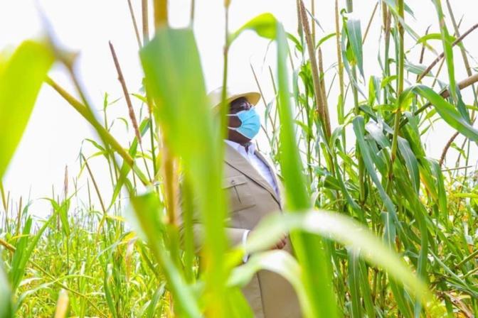 """En images - Tournée économique: Macky Sall démarre par """"Jamm Bugum"""""""