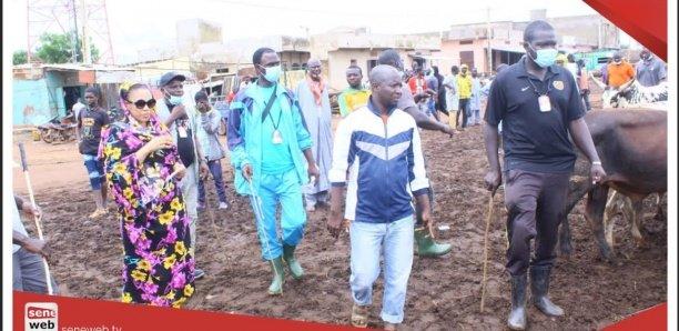 Magal 2020 :La vidéo de Sokhna Aida Diallo au Mali fait le buzz