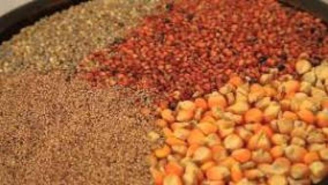 Résidus et contamination dans les produits alimentaires: les sénégalais en danger de mort