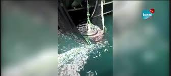 URGENT / DIRECT: Altercation entre les pêcheurs artisanaux de Cayar et des bateaux étrangers