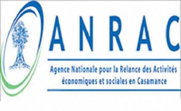 Le vol de bétail toujours d'actualité : L'Anrac ouvre une nouvelle ère dans sa lutte